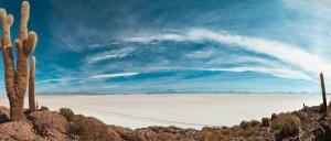 Sur l'île d'Incahuasi, au cœur du salar d'Uyuni, Bolivie - © Anthony Tong Lee