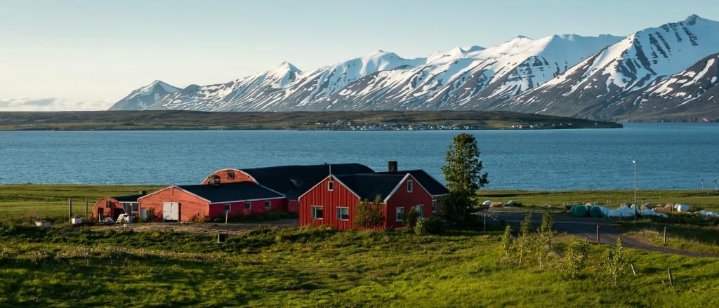 Vue sur l'île d'Hrisey, Islande - © David Meylan