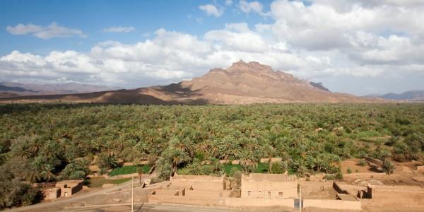 Dans la vallée du Souss, Maroc - © Thomasz Dunn