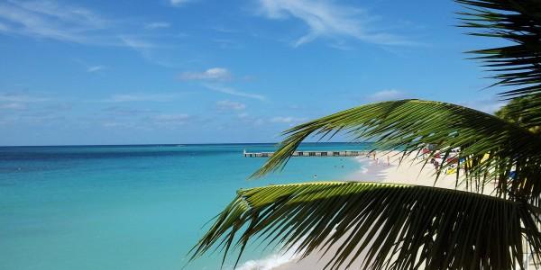 A l'ombre des palmiers, à Montego Bay, en Jamaïque - © Evgenii Klebanov