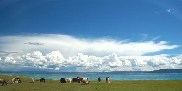 Le lac Khövsgöl, Mongolie - © Mr Hicks46