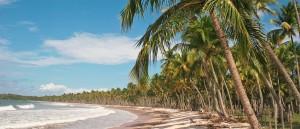 Une plage de l'île de Boipeba - © Danielle Pereira