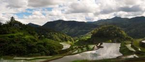 Les rizières de Batad, Philippines - © Madeleine Deaton