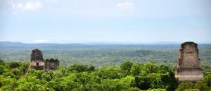 Le site de Tikal au cœur de la forêt - © Mario Bollini